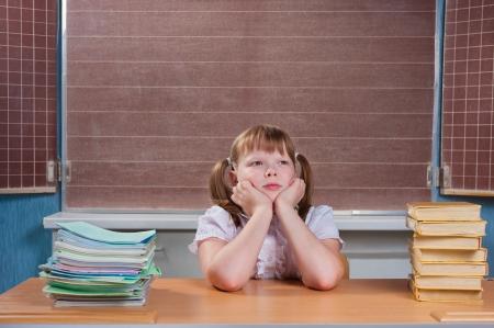 Portrait of a cute schoolgirl in a classroom Stock Photo - 20676506