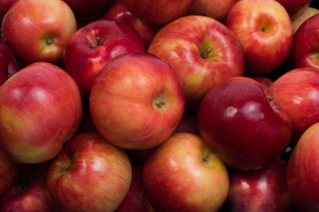 Ripe red-yellow apples closeup photo