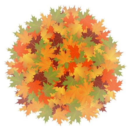 hintergrund herbst: Herbst Hintergrund der Bl�tter Runde maple.vector Illustration. Illustration