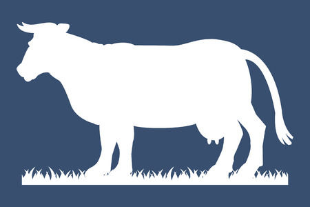 beautiful cow: White silhouette of cow isolated on grey background. Simple flat vector illustration, EPS 10. Illustration