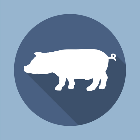 porcine: Silhouette of pig. Round flat vector icon  with long shadow. EPS 10. Illustration