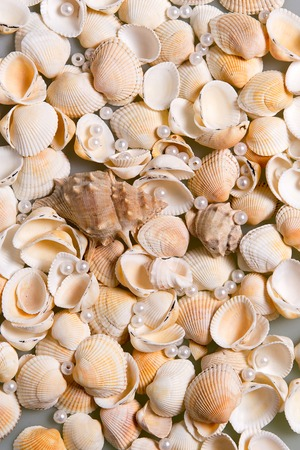 Scattered seashells and colored glass beads. Pearl Pearls in shells, memories of the holiday by the sea Banco de Imagens