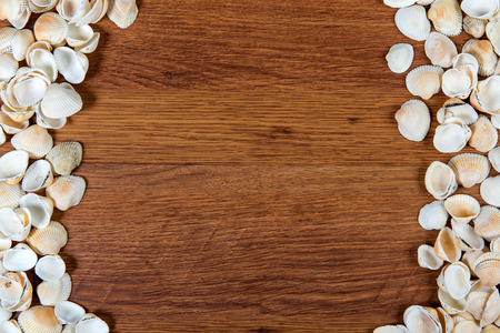 Sea shells on sand. Summer beach background. Top view. Seashells on a wooden table - a reminder of the summer vacation.
