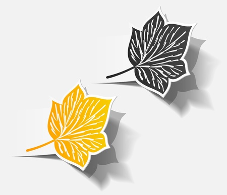 autumn sticker realistic object shadow leaf set Vector