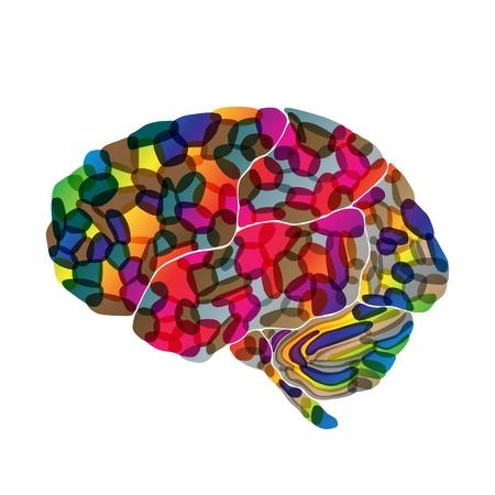 人間の脳は、抽象的な背景のベクトル