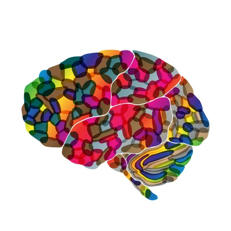 human brain, vector abstract background