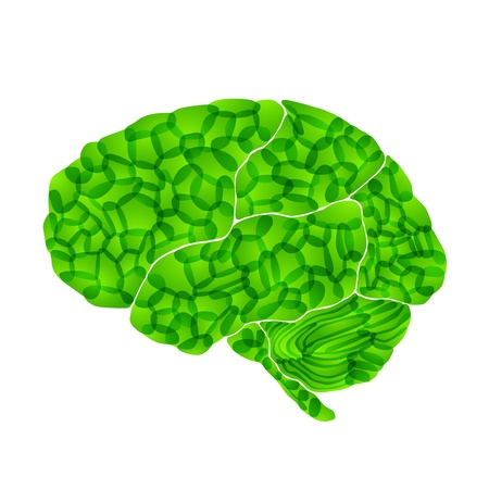 oblongata: human brain, green thoughts, vector abstract background