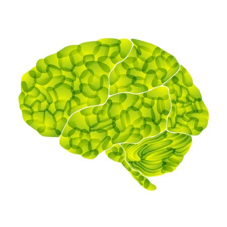human brain, light green aura, vector abstract background photo