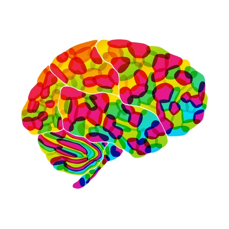 human brain, rainbow dream, vector abstract background Stock Photo