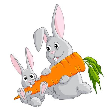 hare: funny rabbits