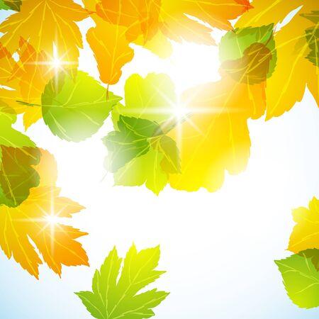 autumn background Stock Vector - 13792693