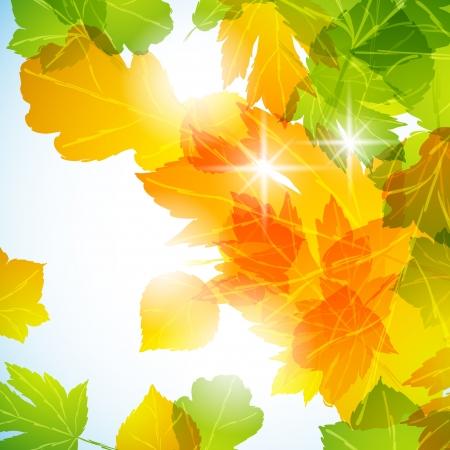 秋の背景  イラスト・ベクター素材