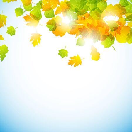 yellowautumn: autumn background Illustration