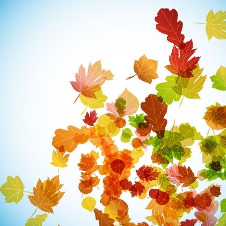 autumn background Stock Vector - 15707298