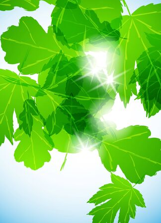 life style: green background
