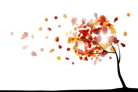 autumn background Vectores