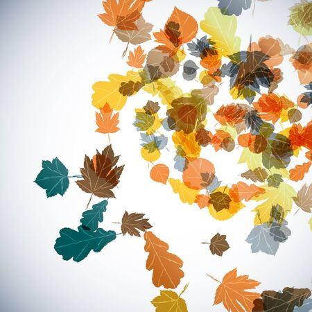 autumn background Stock Vector - 16653906