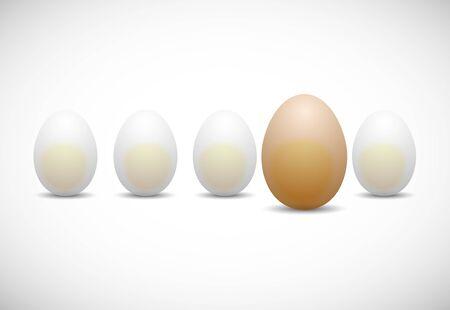 chicken egg: chicken egg