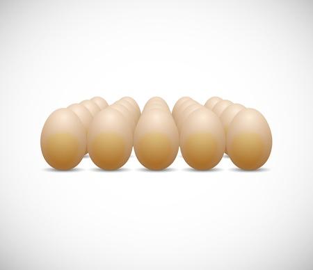 chicken egg Stock Vector - 18069700
