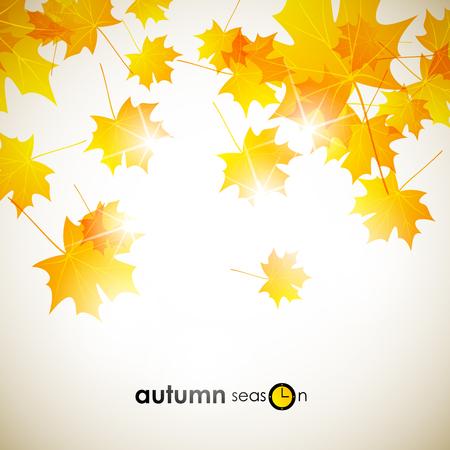 fall background: autumn background Illustration
