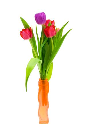 Beautiful Spring Tulips in a Vase. Isolated On White Stock Photo