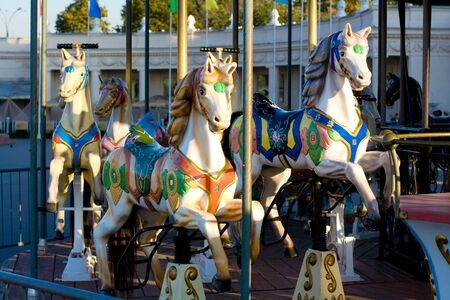 Merry go round at the park (carousel horse)