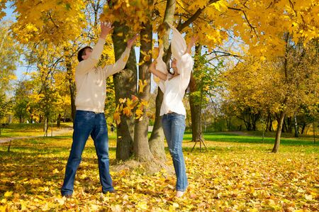 Young happy couple throwing autumn leaves in the air Stock Photo - 3756656