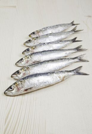 Group raw sardines, detail of raw fish, food healthy lifestyle Stock Photo - 18094431