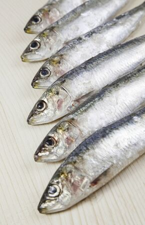 Heads raw sardines, detail of fresh raw fish, healthy food, no fat diet Stock Photo - 18094432