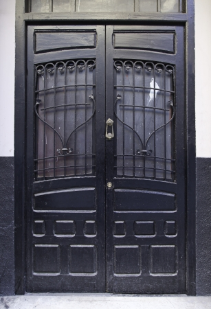 Old Victorian wooden door, wooden door detail classical closed, protection in the city, urban decoraccion Stock Photo - 18381078