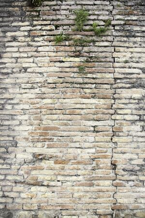 Ruined brick wall, detail of ancient city wall, historical monument, detail texture photo