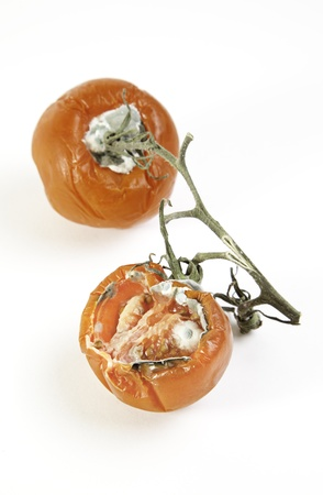 Bad tomatoes, vegetable detail spoiled by the weather, food poisoning, food background photo
