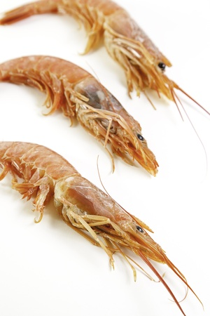 Luxury prawns, seafood quality, luxury food and glamor