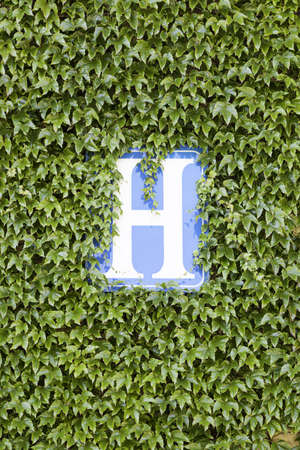 Hotel sign, detail of a wall with vegetation and a sign of hotel, lodging