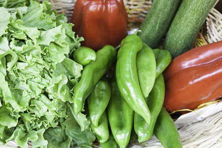 Peppers cucumbers and lettuce, detail of fresh vegetables, healthy lifestyle food, diet and health Stock Photo - 21560399