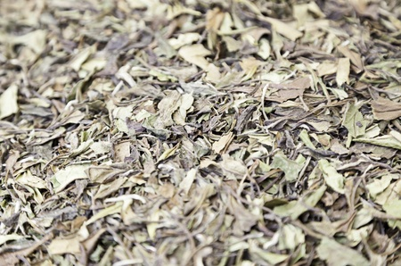 Herbs infusion, detail of dried herbs, tea and tradition oriented, traditional market Stock Photo - 21560400