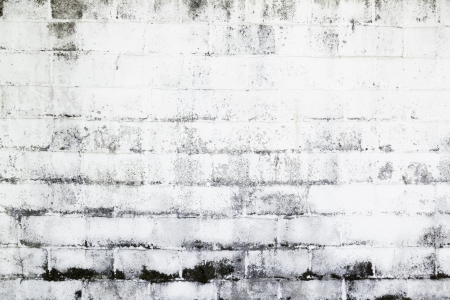 brick and mortar: Dirty and damaged white wall, detail of an old white brick wall, facade abandoned