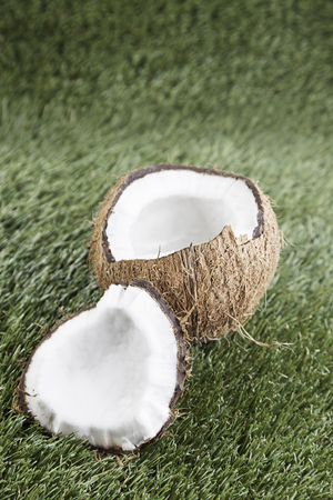 Tropical coconut cut, detail of an open tropical fruit to eat, healthy food, dessert Stock Photo - 23428343
