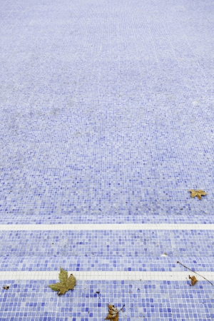 Empty pool with fall leaves, detail of a summer pool, neglect and dirt