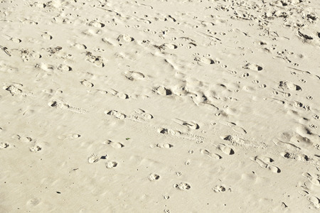 Footprint in the sand on the beach, detail signal marked in the sand, sea sand photo