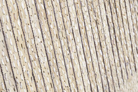Stones embedded wood, detail of a wooden board to rip and scrape photo