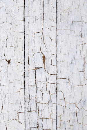 chipped: Chipped and old wood, detail of an abandoned wall textured background