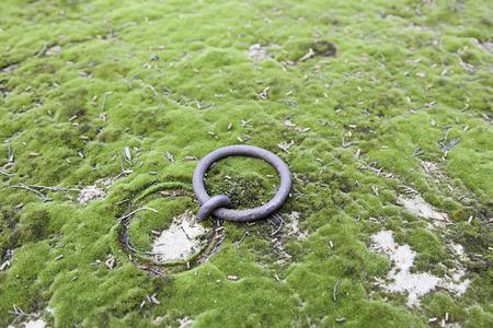 terezin: Vecchio anello in una tomba, particolare di un antico tomba in un cimitero Archivio Fotografico