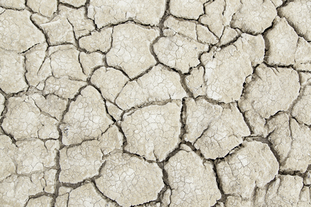 neglect: Dry earth ecological disaster, detail of climate change, drought and neglect