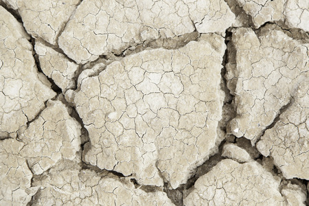 ecological disaster: Dry earth ecological disaster, detail of climate change, drought and neglect