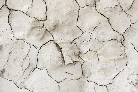 ecological disaster: Dry soil by a drought, detail of climate change, ecological disaster