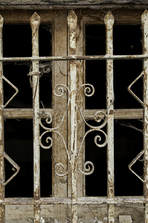 metal grate: Metal fence, old window, detail of a protection fence