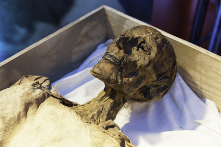 Old mummy, detail of a human momfied...