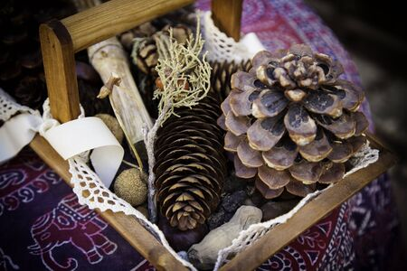 Dry walnuts in a christmas basket, detail of holiday celebration, healthy food