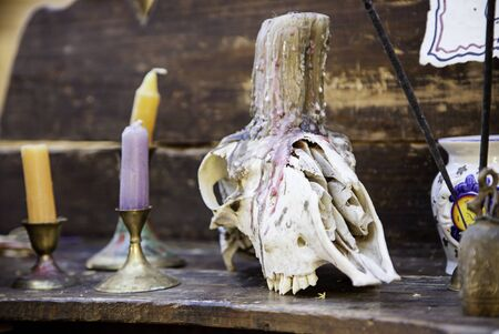 Goat skulls for terrifying decoration, halloween detail, witchcraft Stock Photo